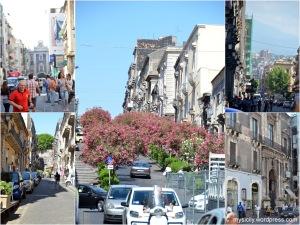 Catania_Via Etnea (2)