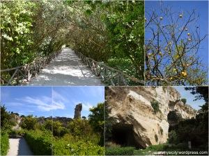 Siracusa_Parco Archeologico della Neapolis (3)