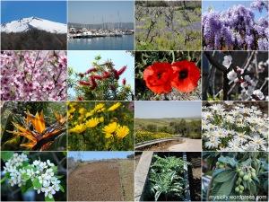 Nature_April (2)