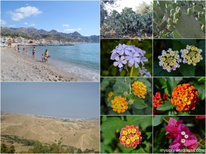 Nature_July