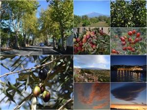 Nature_October