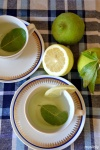 Food_Canarino_Bevanda di limone e alloro