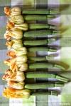 Food_Fiori di zucchine