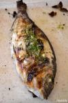 Food_Orata all griglia con salmoriglio