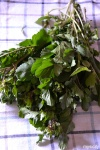 Food_Rucola selvatica