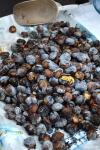 food_caldarroste