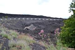 Vulcan Etna_2013 June