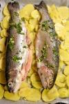 Food_Trota salmonata al forno