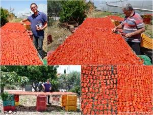 Pomodorini ciliegino secchi