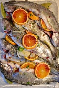 Food_Trota salmonata all arancia e finocchio