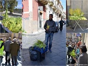 Domenica delle Palme_2015 (2)