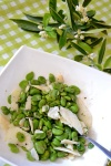 Food_Fave_pecorino_Insalata