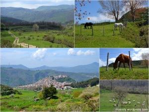 Montalbano (1)