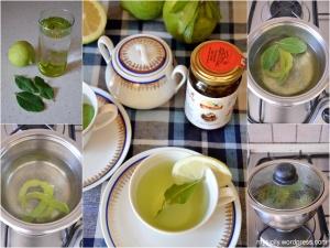 Canarino_Bevanda di limone e alloro