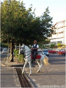 Interesante_Principe sul cavallo bianco
