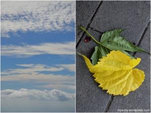 Nature_Ottobre_2015 (1)
